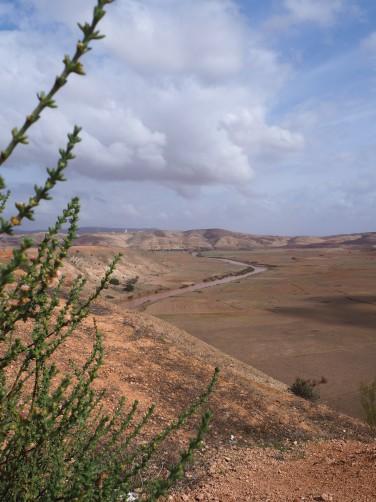 road to Essaouira 2